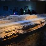 Muzieju naktis 252