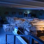 Muzieju naktis 259